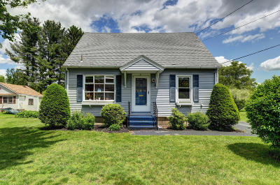 Pittsfield Single Family Home For Sale: 21 Ventura Ave