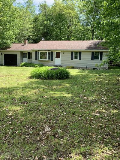 Berkshire County Single Family Home For Sale: 28 North Ridge St