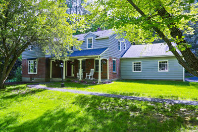 Pittsfield Single Family Home For Sale: 233 Mountain Dr
