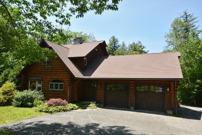 Berkshire County Single Family Home For Sale: 767 Algerie Rd