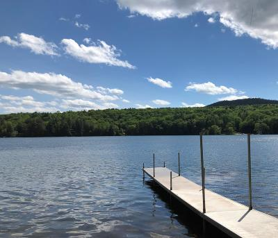 Berkshire County Single Family Home For Sale: 26 Seven Arts Rd
