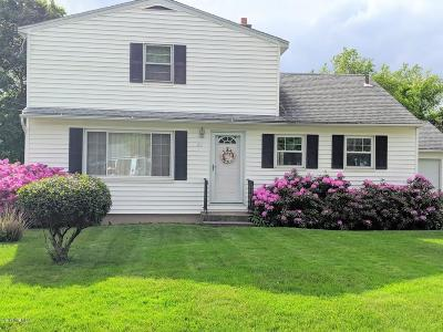 Pittsfield Single Family Home For Sale: 41 Pine Grove Dr