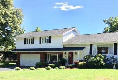 Pittsfield Single Family Home For Sale: 50 Pinto Dr