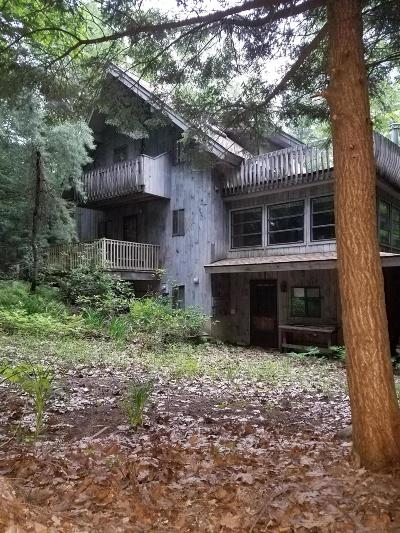 Berkshire County Single Family Home For Sale: 89 Benton Dr