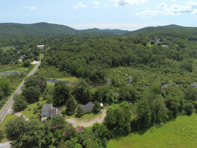 Berkshire County Single Family Home For Sale: 43 Albany Rd