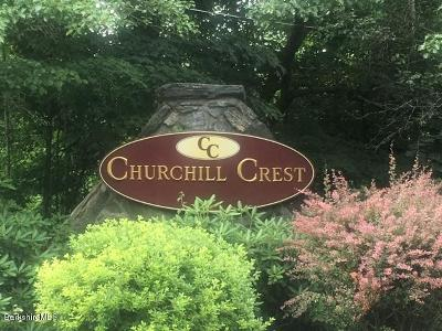 Pittsfield Condo/Townhouse For Sale: 47 Churchill Crest