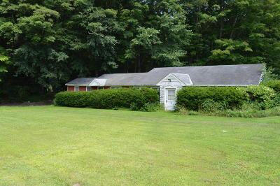 Adams, Clarksburg, Florida, New Ashford, North Adams, Savoy, Williamstown Single Family Home For Sale: 3 Smith Rd
