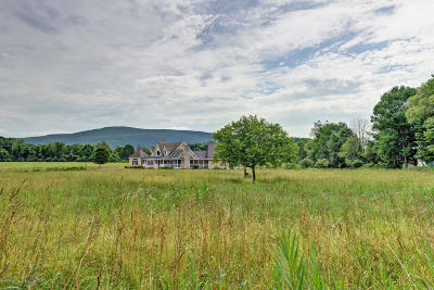 Berkshire County Single Family Home For Sale: 359 N Plain Rd
