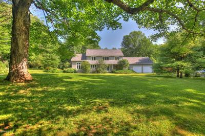 Berkshire County Single Family Home For Sale: 35 Hammertown Rd