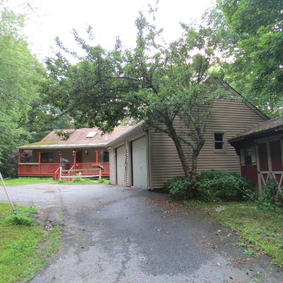 Berkshire County Single Family Home For Sale: 51 Whitman Rd