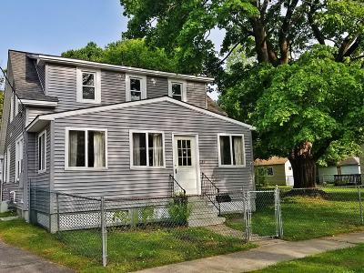 Pittsfield Single Family Home For Sale: 44 Marcella Ave
