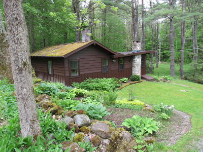 Berkshire County Single Family Home For Sale: 3 Cobb Rd