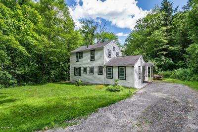 Berkshire County Single Family Home For Sale: 159 Sandisfield Rd