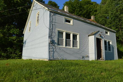 Adams, Clarksburg, Florida, New Ashford, North Adams, Savoy, Williamstown Single Family Home For Sale: 390 Walker St