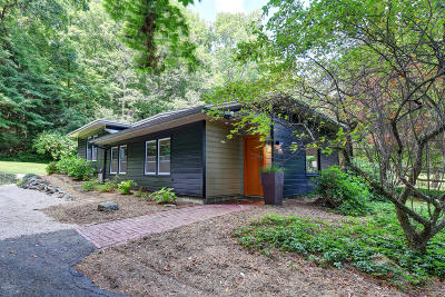 Berkshire County Single Family Home For Sale: 216 South Undermountain Rd
