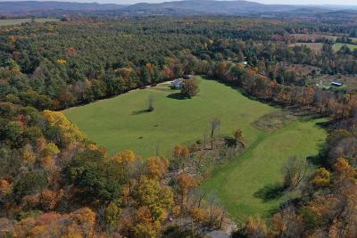 Berkshire County Single Family Home For Sale: 67 Rowe Rd