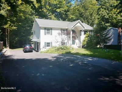 Pittsfield MA Single Family Home For Sale: $325,000