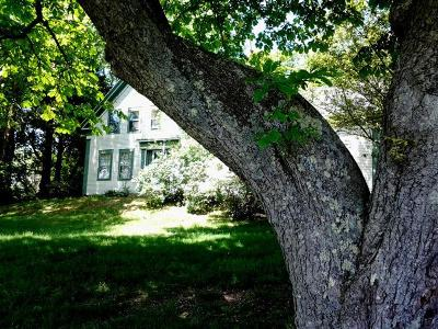 Chatham Single Family Home For Sale: 1010 Main Street