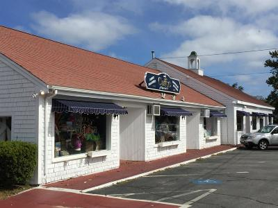 Chatham Commercial For Sale: 1238 Main Street