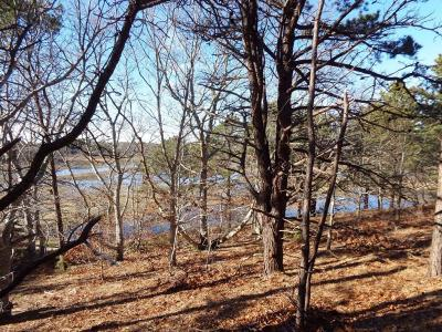 Wellfleet Residential Lots & Land For Sale: 130 Bayberry Lane