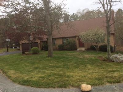 Brewster Single Family Home For Sale: 217 Rocky Hill Road
