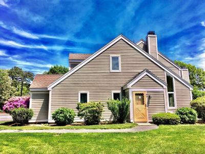 Brewster Condo/Townhouse For Sale: 99 Trevor Lane