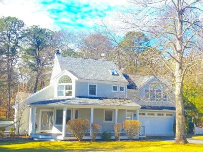 Falmouth Single Family Home For Sale: 18 Southview Way