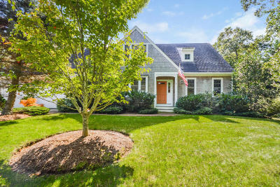 Falmouth Single Family Home For Sale: 771 Sandwich Road