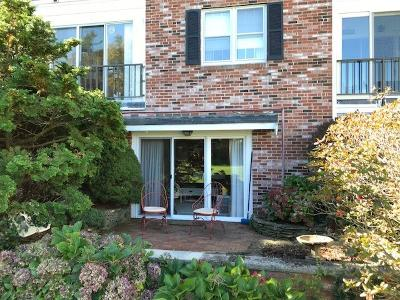 Sandwich Condo/Townhouse For Sale: 75 Highview Drive