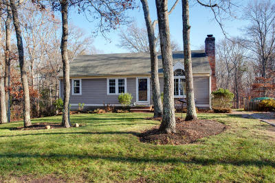 Sandwich Single Family Home For Sale: 49 Blackthorn Path