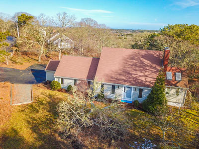 Chatham Single Family Home For Sale: 253 N Skyline Drive