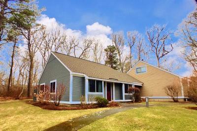Brewster Condo/Townhouse For Sale: 58 Allerton Lane