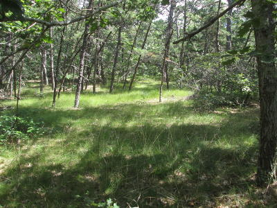 Wellfleet Residential Lots & Land For Sale: 70 Rowell Road