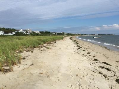Barnstable Condo/Townhouse For Sale: 780 Craigville Beach Road #F1