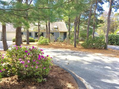 Brewster Condo/Townhouse Active W/Contingency: 38 Friendship Lane