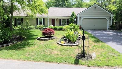 Brewster Single Family Home For Sale: 70 Doran Drive