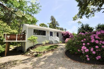 Brewster Single Family Home For Sale: 267 Alden Drive