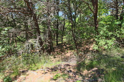 Truro Residential Lots & Land Active W/Contingency: 29 Noons Drive