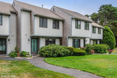 Brewster Condo/Townhouse For Sale: 109 Crescent Lane