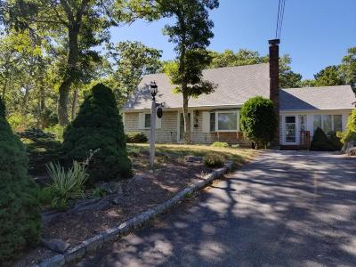 Brewster Single Family Home For Sale: 21 Twinturn Drive
