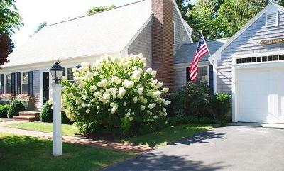 Chatham Single Family Home For Sale: 17 Palmer Drive