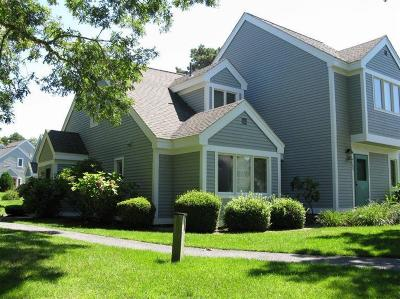 Brewster Condo/Townhouse For Sale: 102 Howland Circle