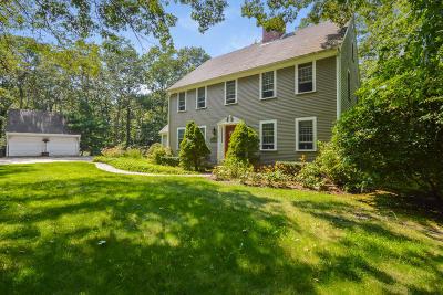 Sandwich Single Family Home For Sale: 12 Village Drive