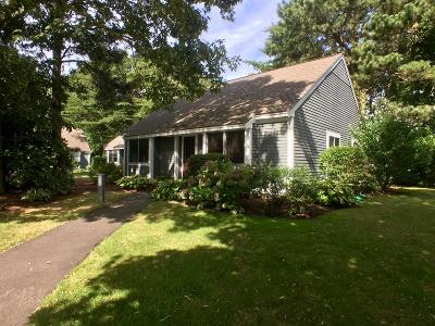 Brewster Condo/Townhouse Active W/Contingency: 67 Susanna Drive