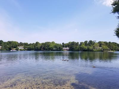 Barnstable Single Family Home For Sale: 90 Holly Lane