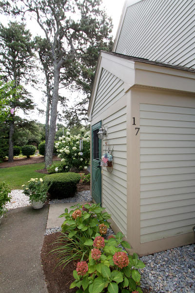 Brewster Condo/Townhouse For Sale: 17 Billington Lane