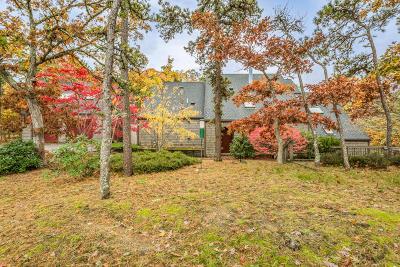 Eastham Single Family Home For Sale: 20 Elder Lane