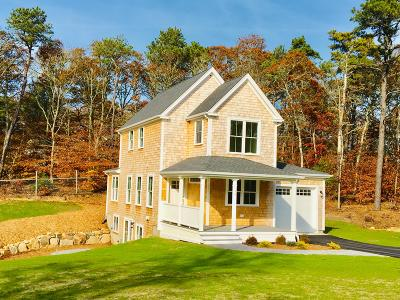 Brewster Single Family Home For Sale: 39 McGuerty Road
