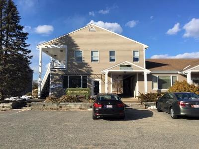 Eastham Commercial For Sale: 3 Main Street #17