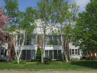 Sandwich Condo/Townhouse For Sale: 30 Highview Drive